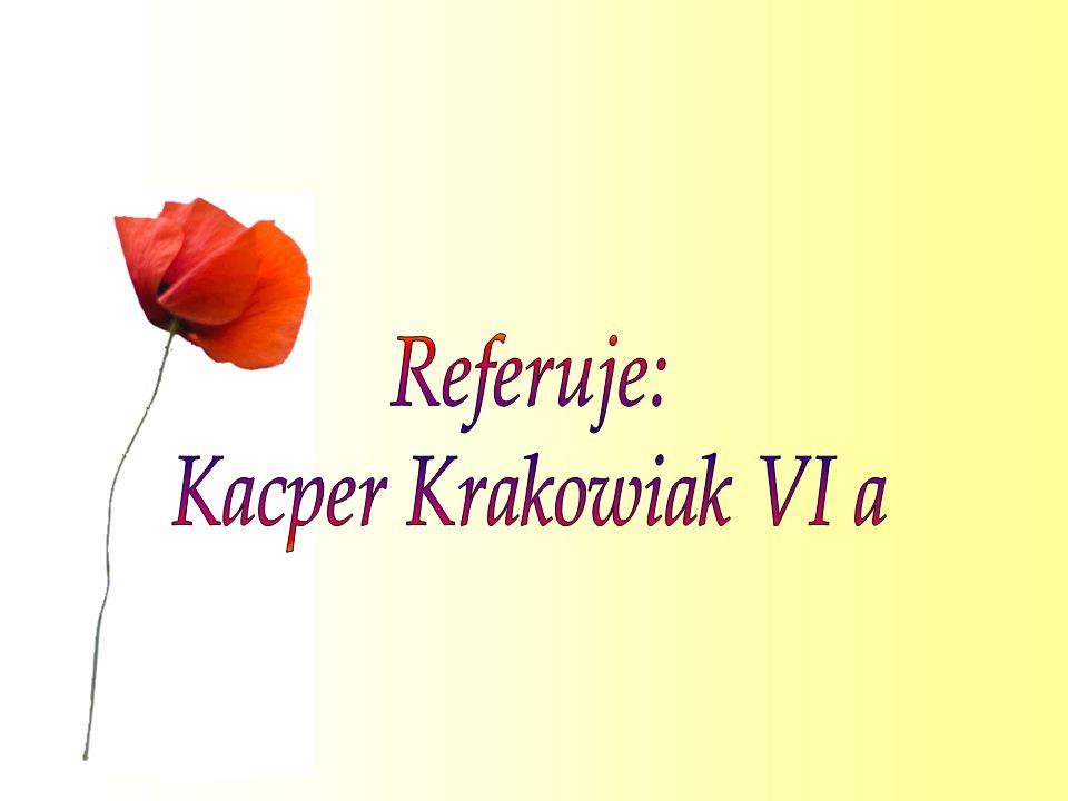 Referuje: Kacper Krakowiak VI a