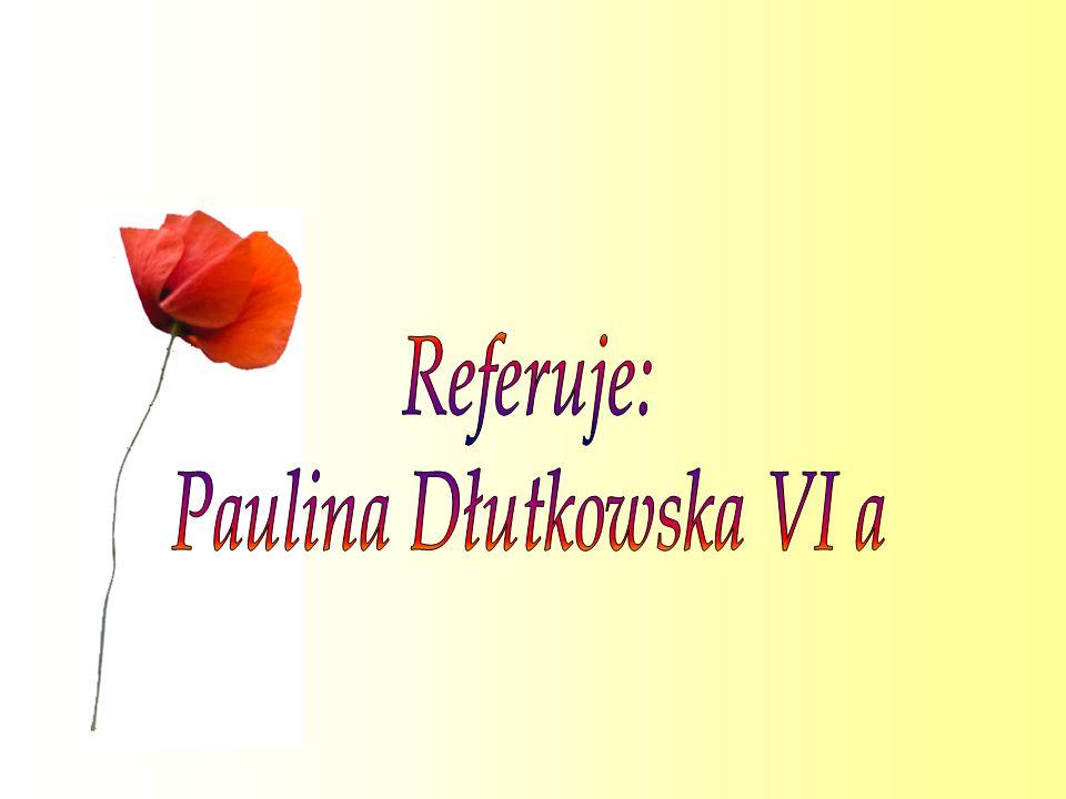Paulina Dłutkowska VI a
