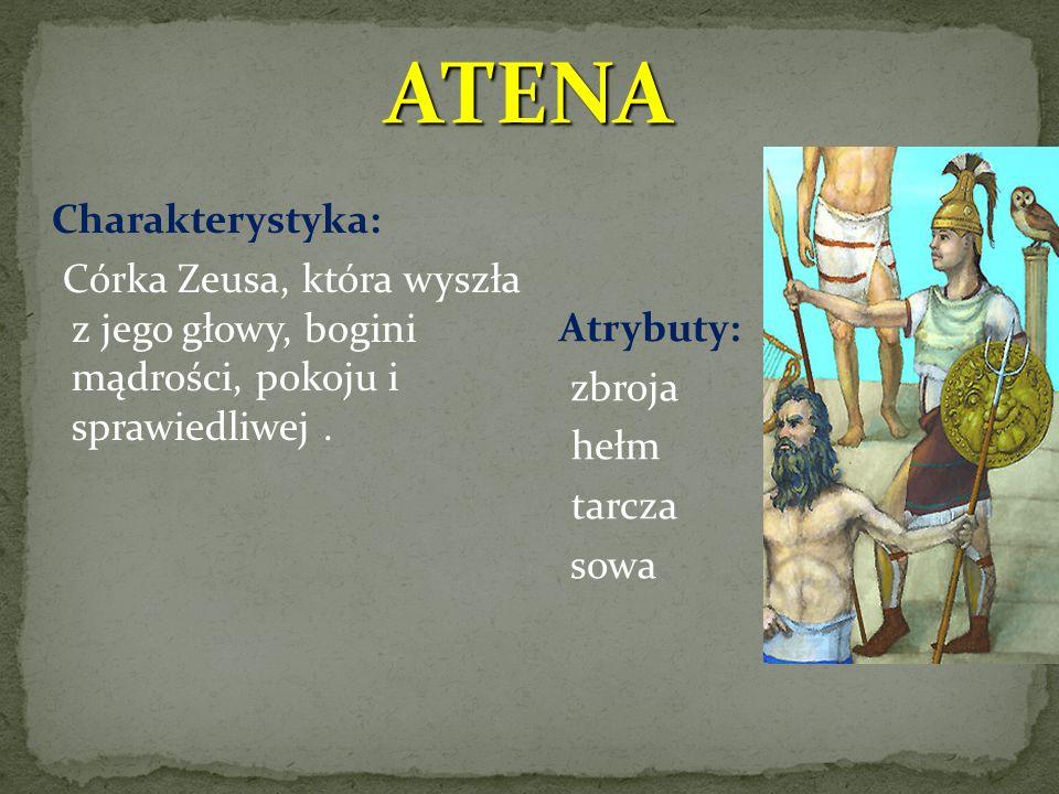 ATENA Charakterystyka: