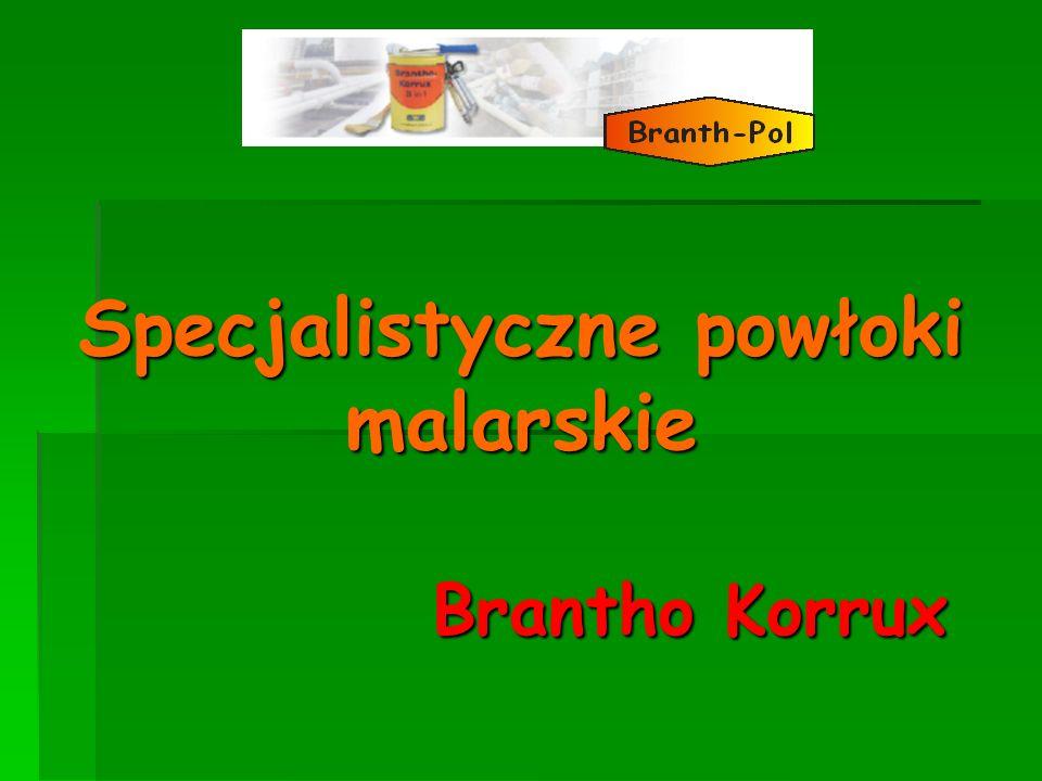 Specjalistyczne powłoki malarskie