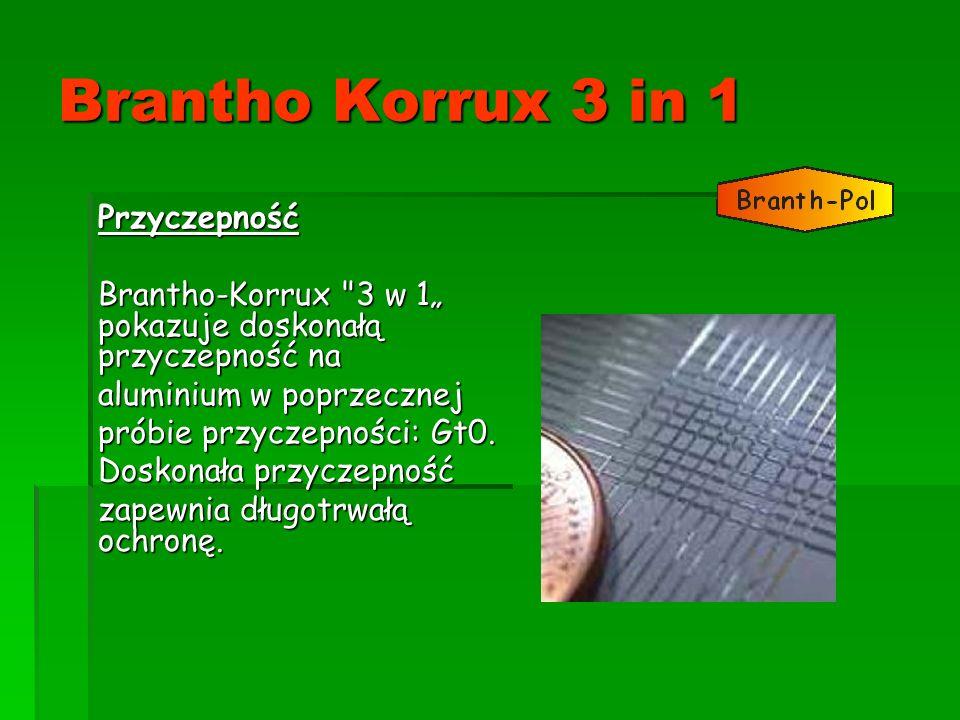 Brantho Korrux 3 in 1 Przyczepność