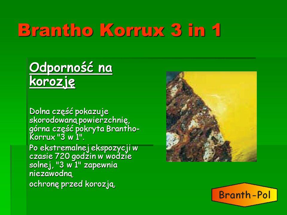 Brantho Korrux 3 in 1 Odporność na korozję