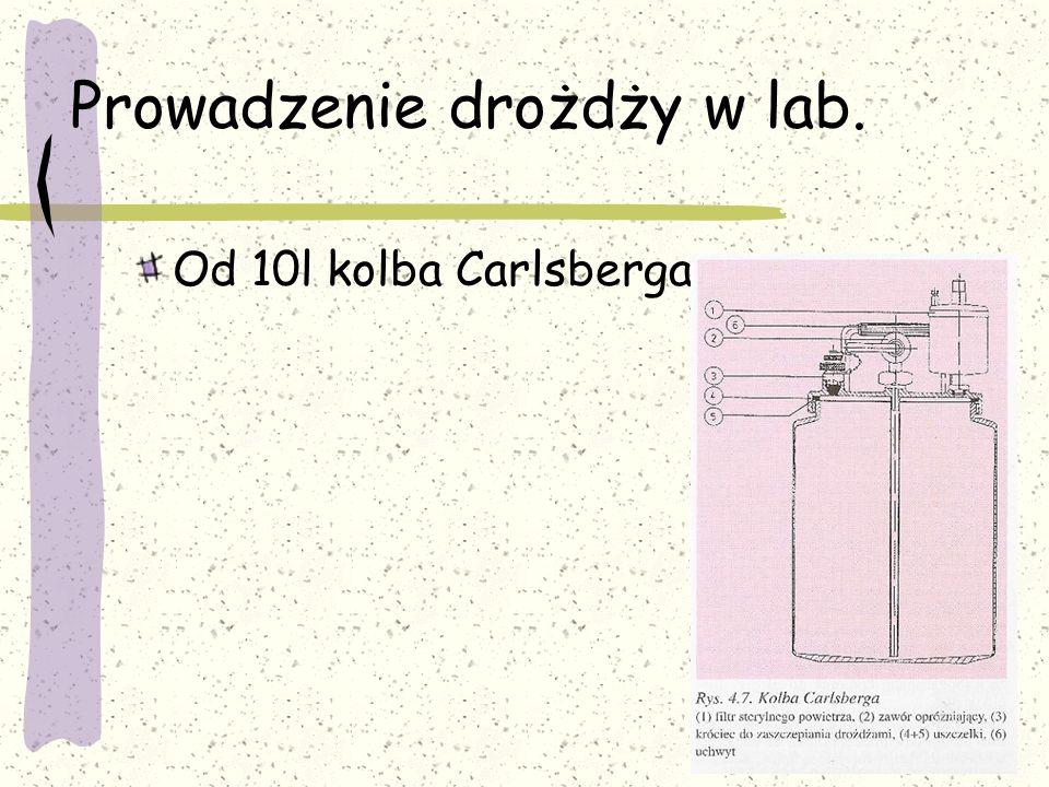Prowadzenie drożdży w lab.