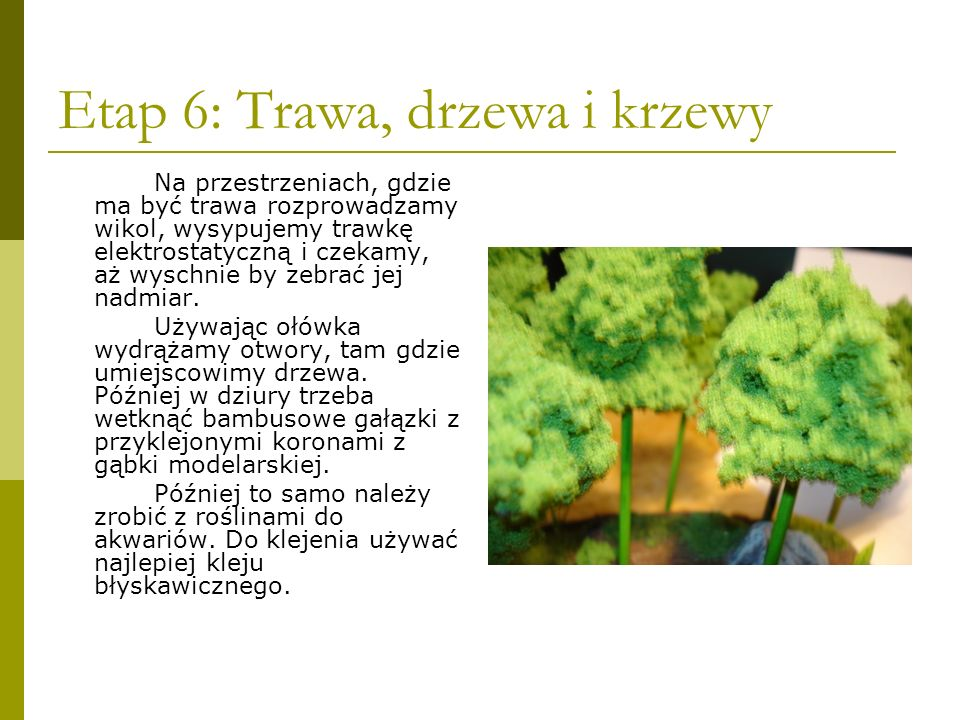 Etap 6: Trawa, drzewa i krzewy