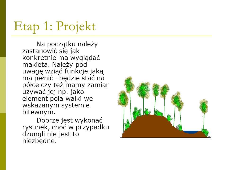 Etap 1: Projekt