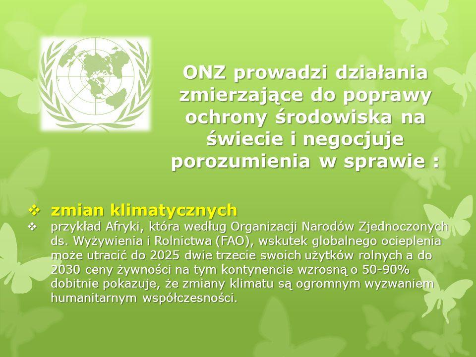ONZ prowadzi działania zmierzające do poprawy