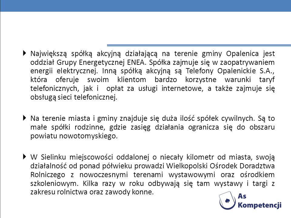 Największą spółką akcyjną działającą na terenie gminy Opalenica jest oddział Grupy Energetycznej ENEA. Spółka zajmuje się w zaopatrywaniem energii elektrycznej. Inną spółką akcyjną są Telefony Opalenickie S.A., która oferuje swoim klientom bardzo korzystne warunki taryf telefonicznych, jak i opłat za usługi internetowe, a także zajmuje się obsługą sieci telefonicznej.