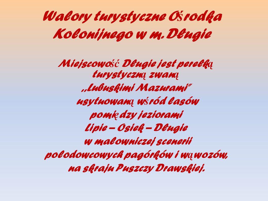 Walory turystyczne Ośrodka Kolonijnego w m. Długie