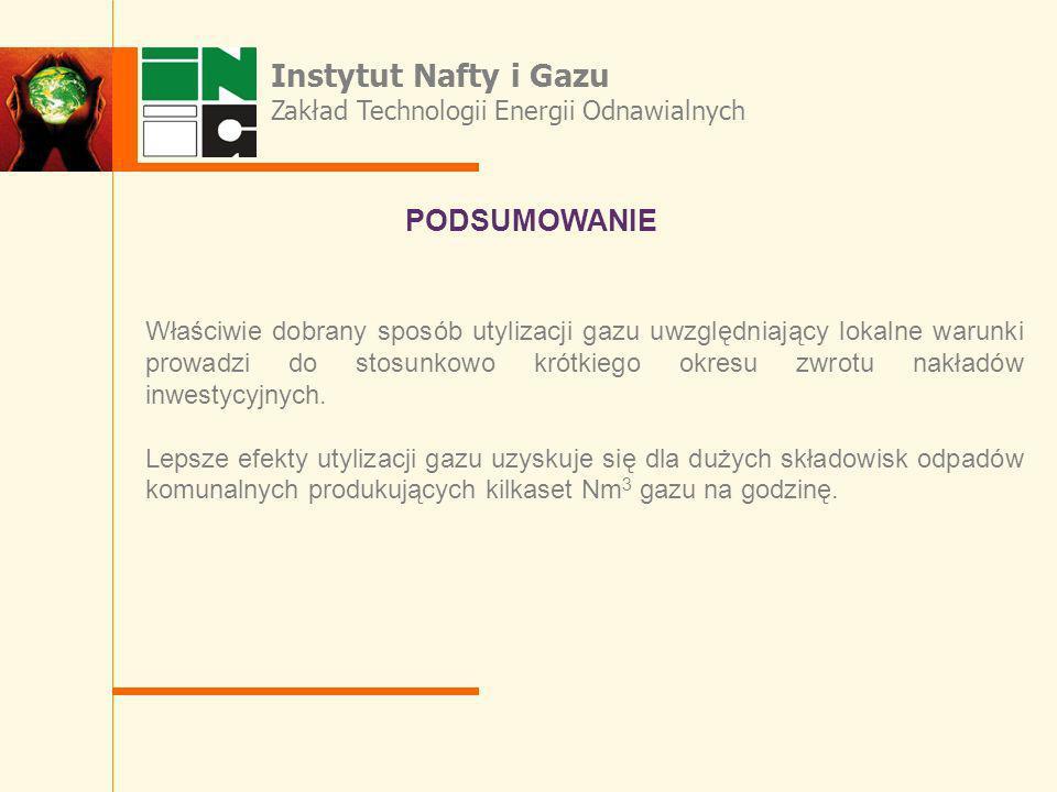 Instytut Nafty i Gazu PODSUMOWANIE