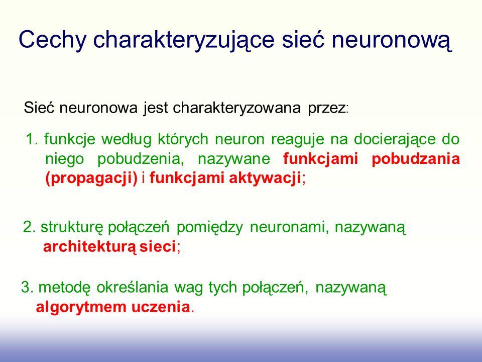 Cechy charakteryzujące sieć neuronową