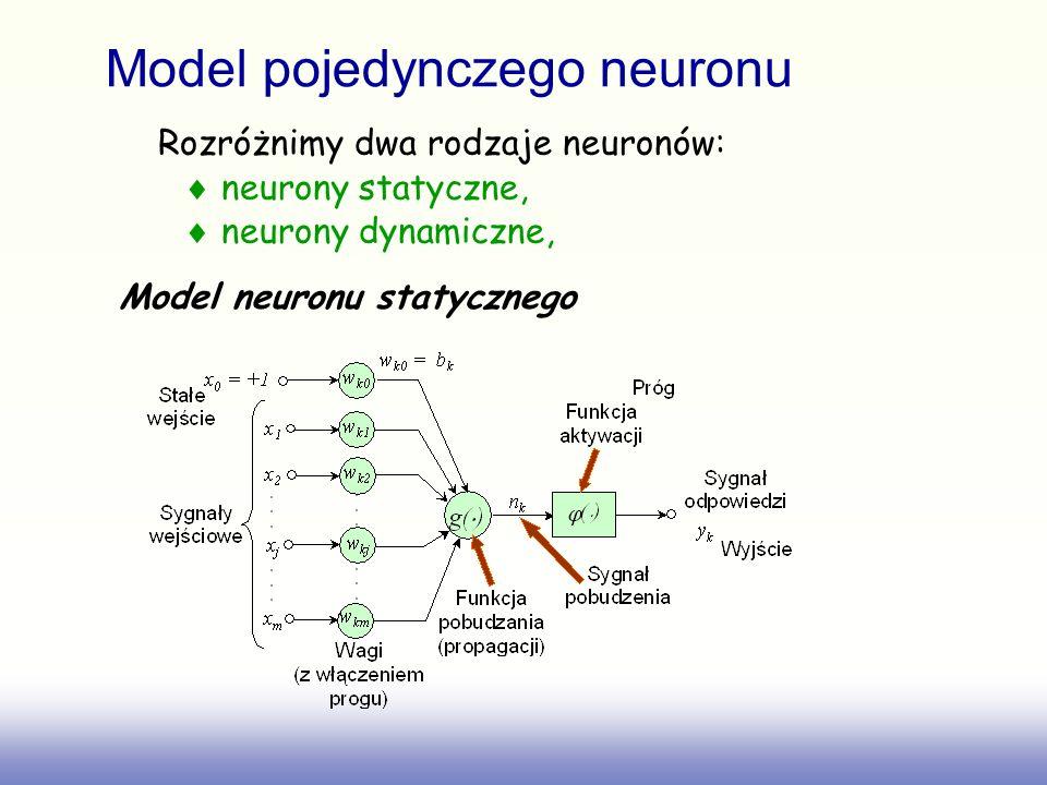 Model pojedynczego neuronu