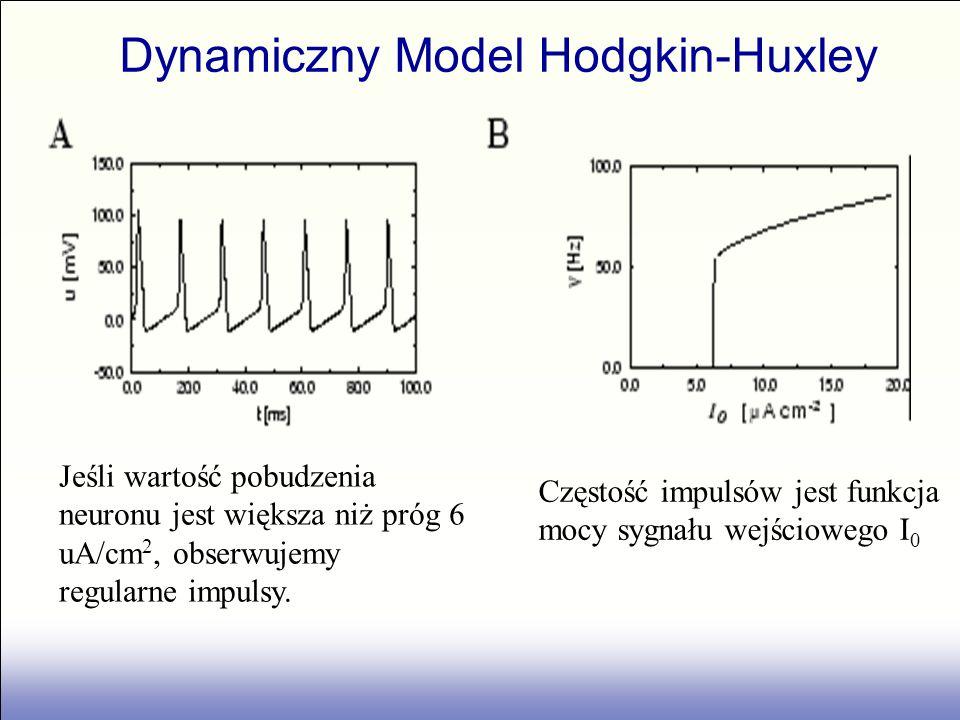 Dynamiczny Model Hodgkin-Huxley
