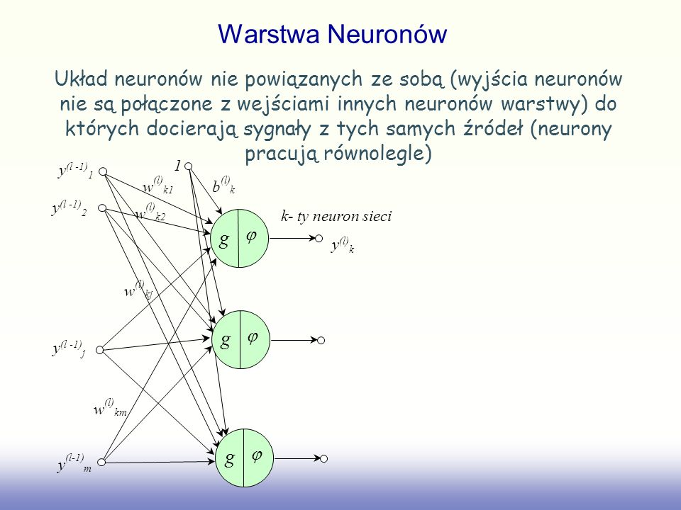 Warstwa Neuronów