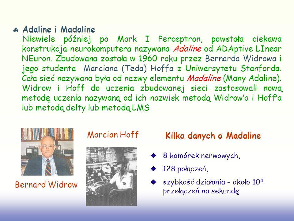 Kilka danych o Madaline