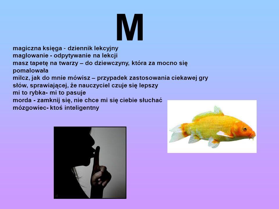 M magiczna księga - dziennik lekcyjny