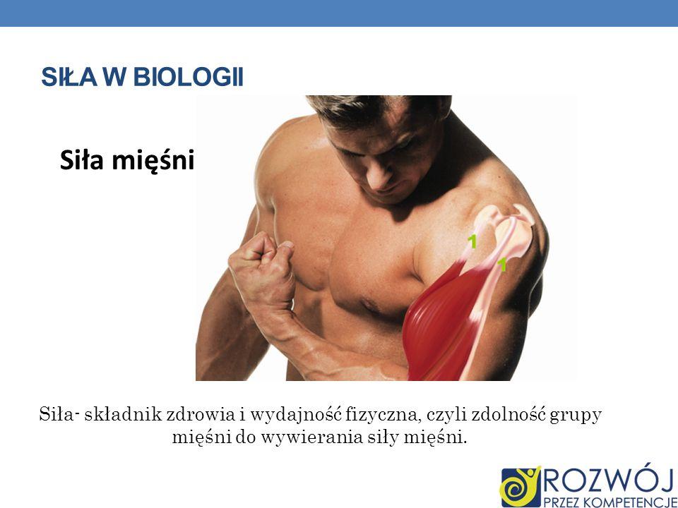 Siła mięśni Siła w biologii