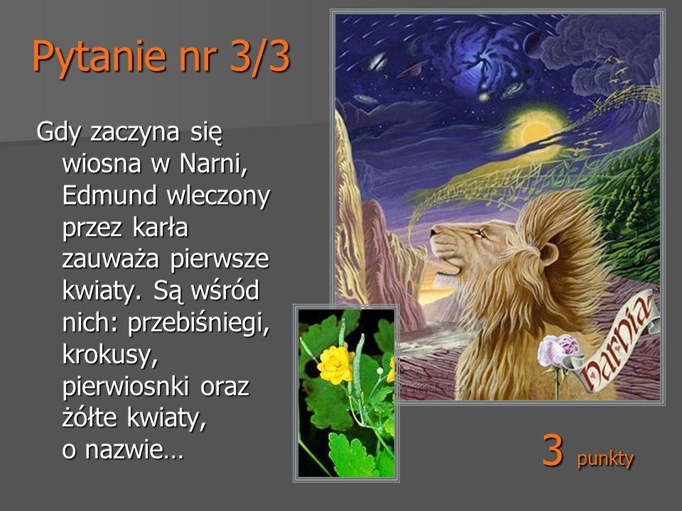 Pytanie nr 3/3