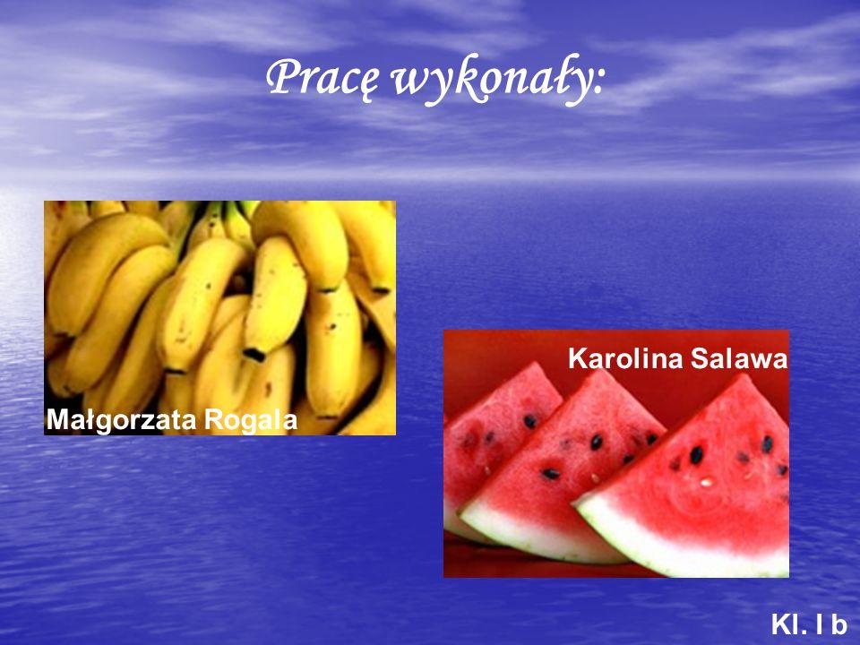Pracę wykonały: Karolina Salawa Małgorzata Rogala Kl. I b