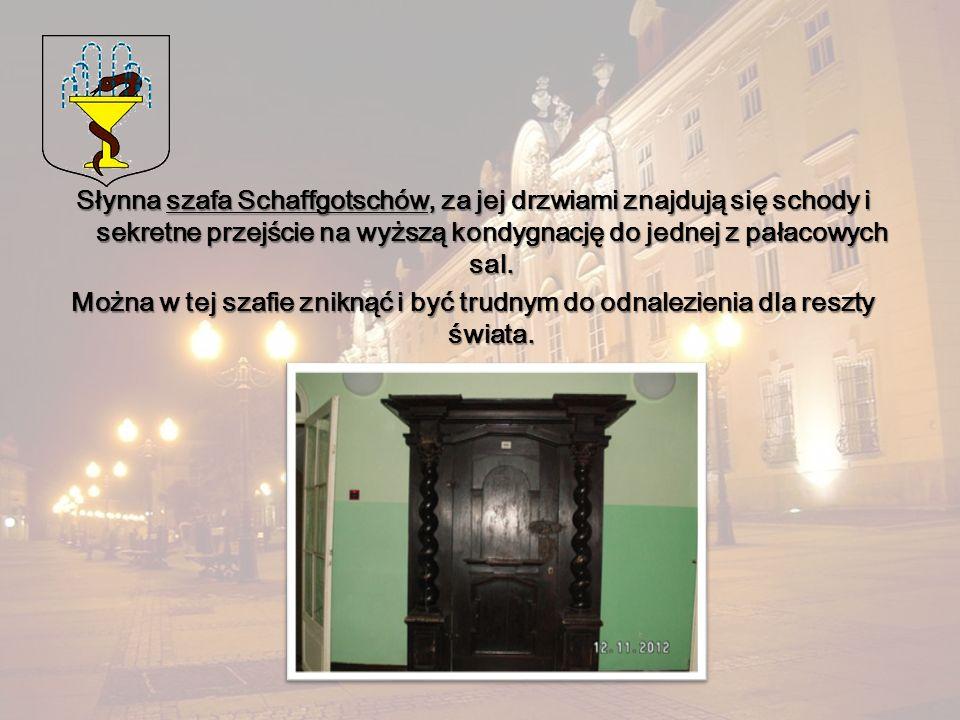 Słynna szafa Schaffgotschów, za jej drzwiami znajdują się schody i sekretne przejście na wyższą kondygnację do jednej z pałacowych sal.