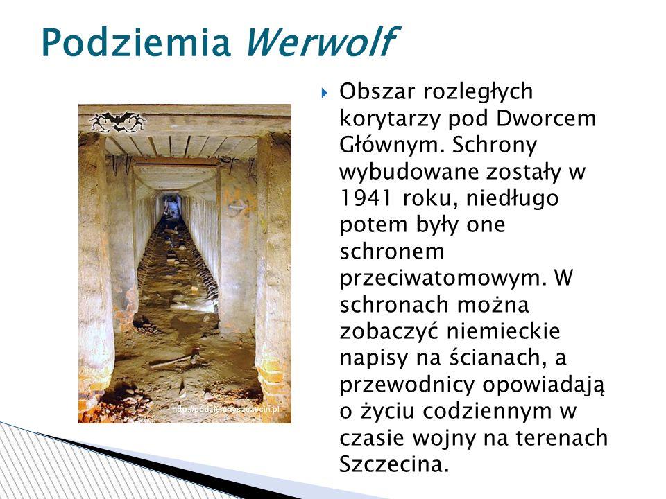 Podziemia Werwolf