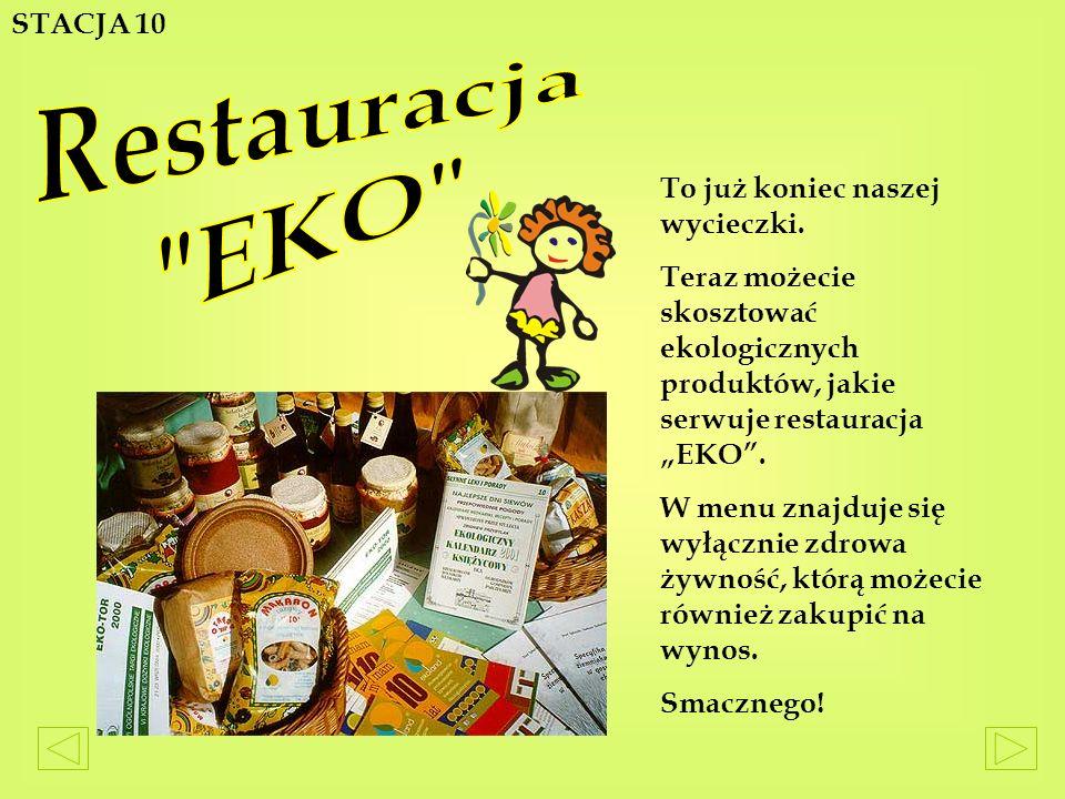Restauracja EKO STACJA 10 To już koniec naszej wycieczki.