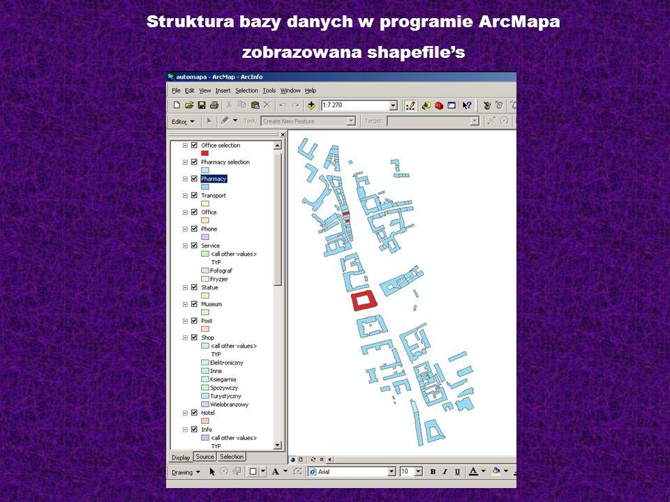 Struktura bazy danych w programie ArcMapa zobrazowana shapefile's