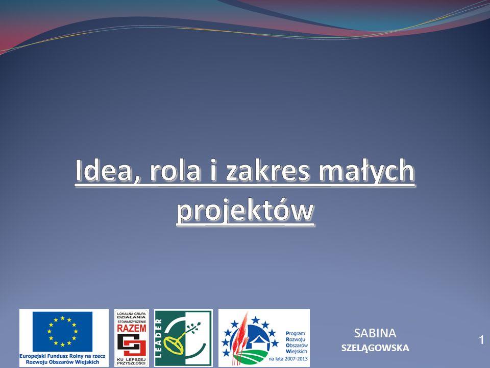 Idea, rola i zakres małych projektów