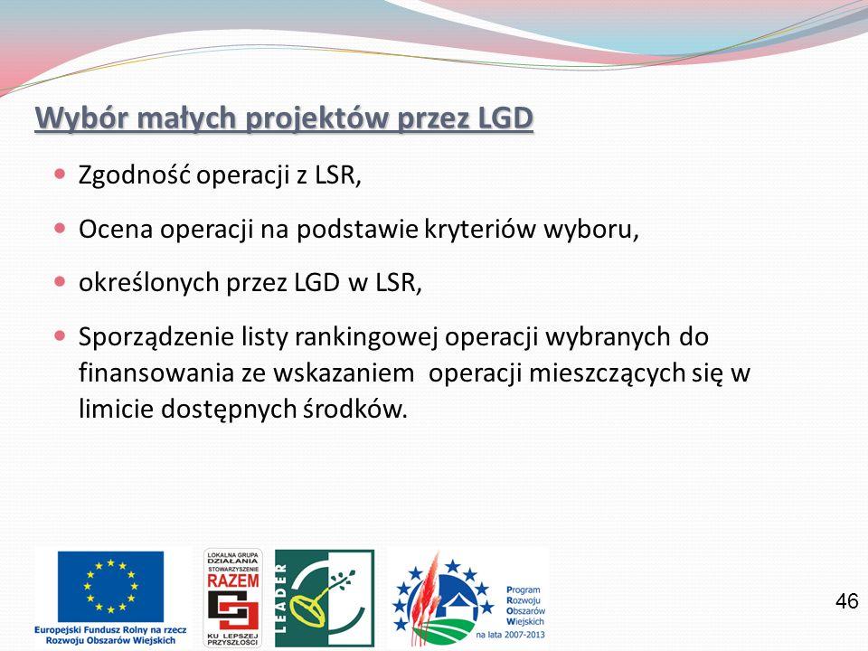 Wybór małych projektów przez LGD