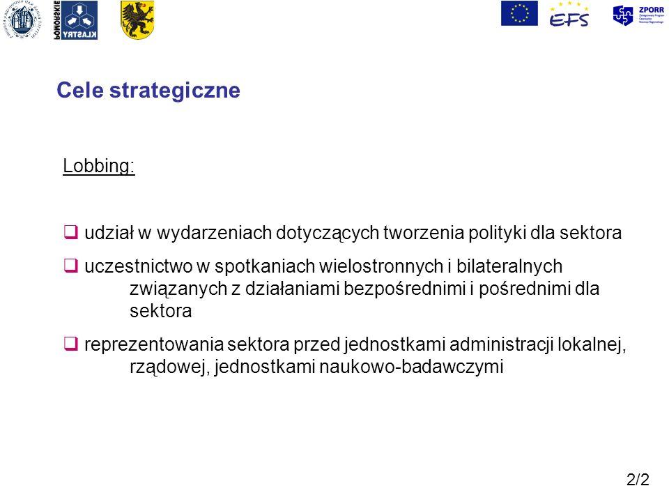 Cele strategiczne Lobbing:
