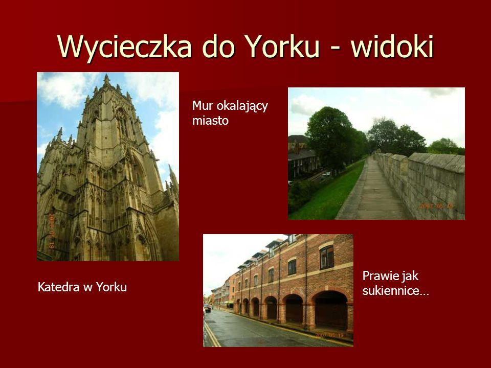 Wycieczka do Yorku - widoki