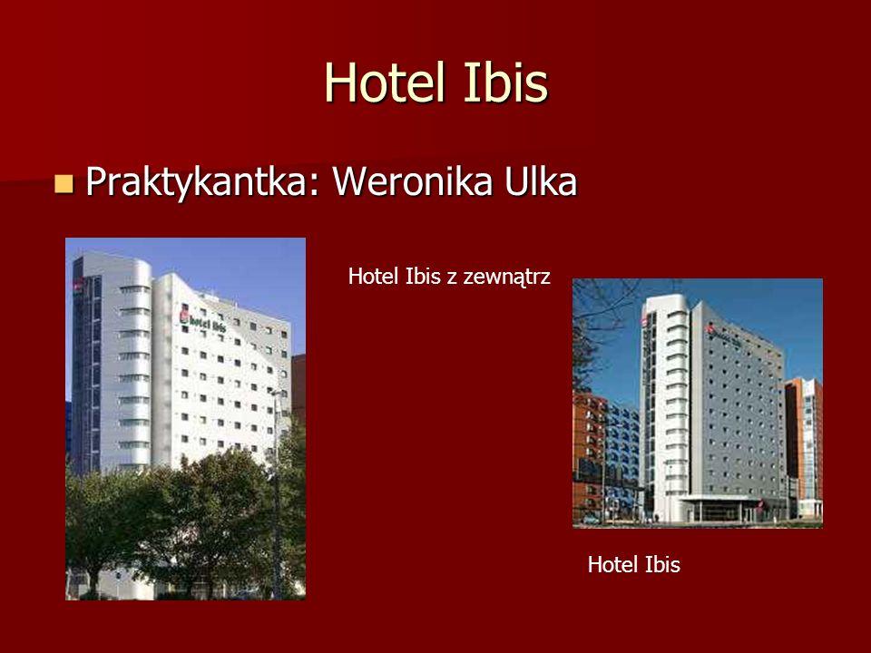 Hotel Ibis Praktykantka: Weronika Ulka Hotel Ibis z zewnątrz