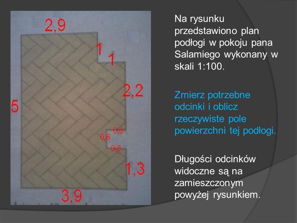 Na rysunku przedstawiono plan podłogi w pokoju pana Salamiego wykonany w skali 1:100.