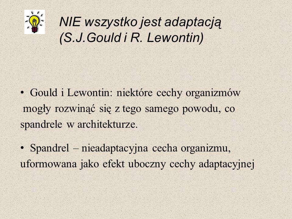NIE wszystko jest adaptacją (S.J.Gould i R. Lewontin)