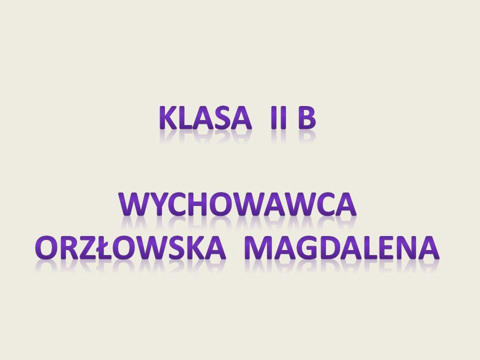Klasa Ii b Wychowawca Orzłowska magdalena