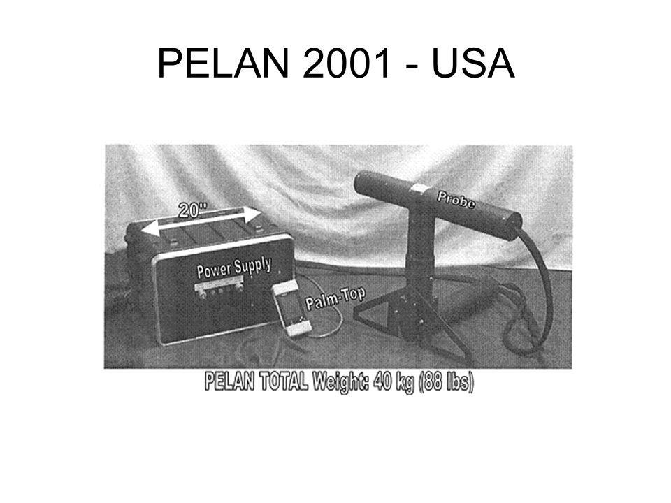PELAN 2001 - USA