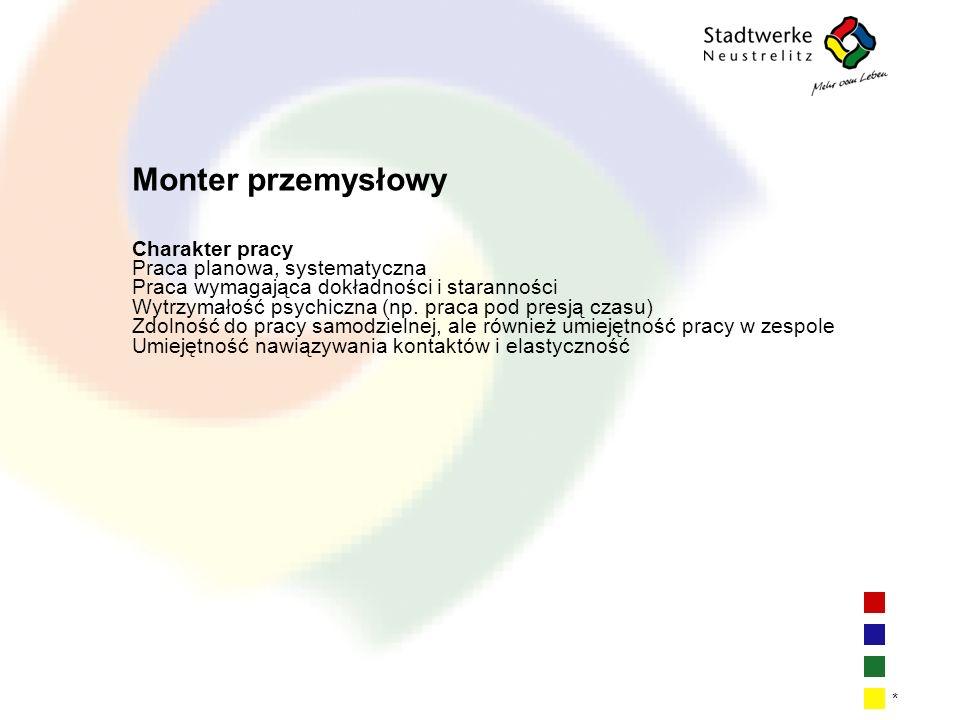 Monter przemysłowy Charakter pracy Praca planowa, systematyczna