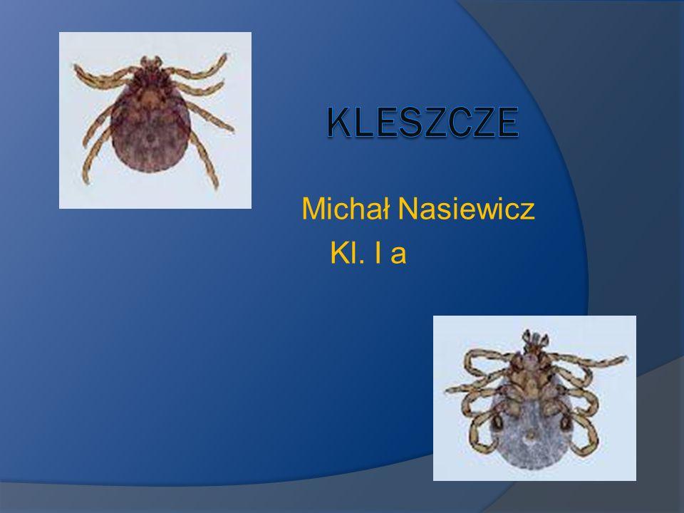 Kleszcze Michał Nasiewicz Kl. I a