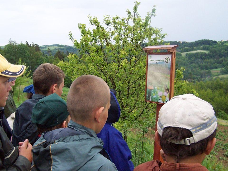 W 2007 r. w Lasach Państwowych funkcjonowało 4699 obiektów edukacyjnych: 40 ośrodków edukacji ekologicznej, 458 wiat edukacyjnych, 235 izb edukacji leśnej, 833 ścieżki edukacyjne, 1498 punktów edukacji leśnej i 1635 innych obiektów wykorzystywanych w edukacji leśnej.