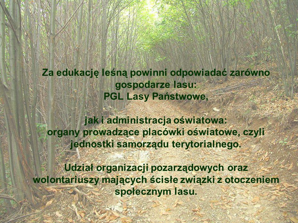 Za edukację leśną powinni odpowiadać zarówno gospodarze lasu: