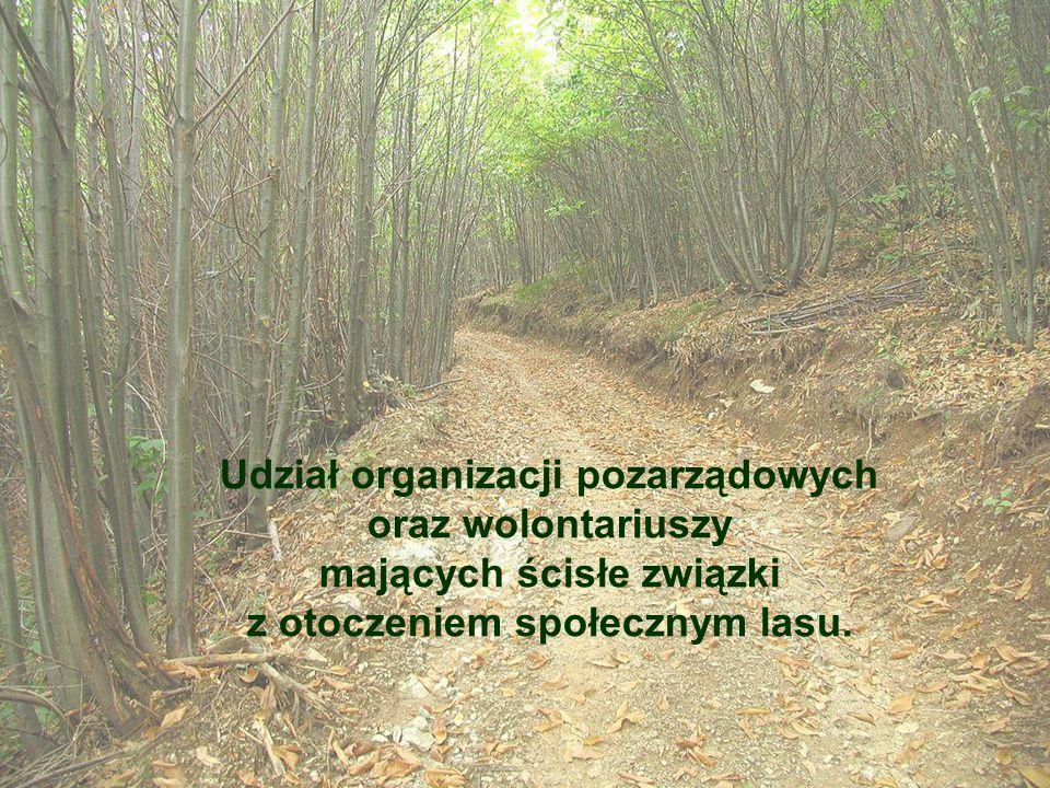 Udział organizacji pozarządowych oraz wolontariuszy