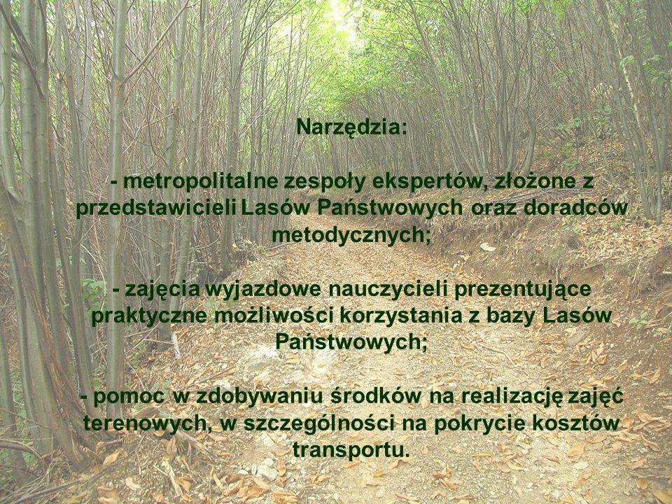 Narzędzia: - metropolitalne zespoły ekspertów, złożone z przedstawicieli Lasów Państwowych oraz doradców metodycznych;
