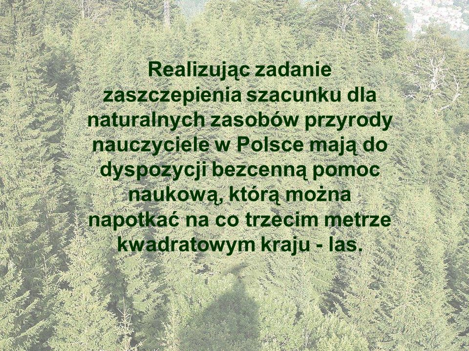 Realizując zadanie zaszczepienia szacunku dla naturalnych zasobów przyrody nauczyciele w Polsce mają do dyspozycji bezcenną pomoc naukową, którą można napotkać na co trzecim metrze kwadratowym kraju - las.