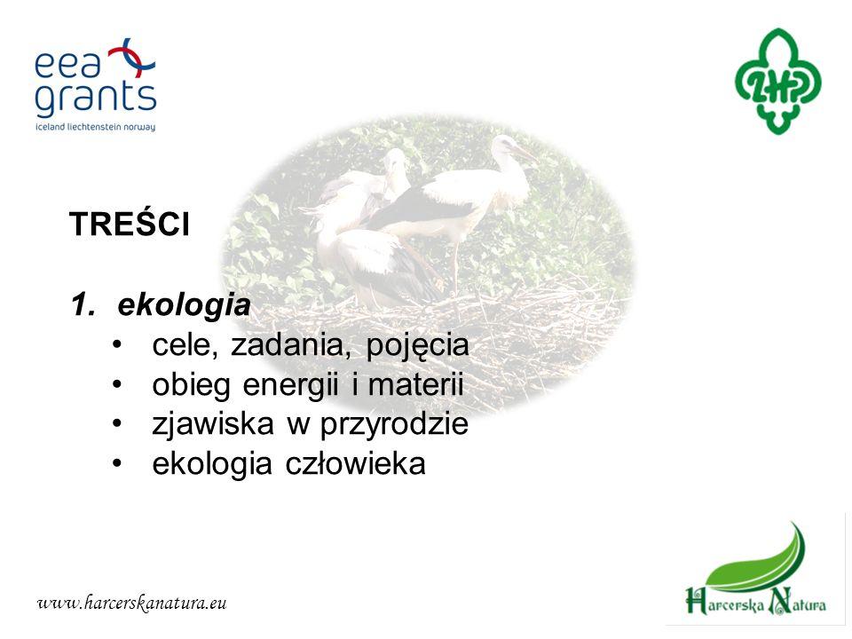 obieg energii i materii zjawiska w przyrodzie ekologia człowieka