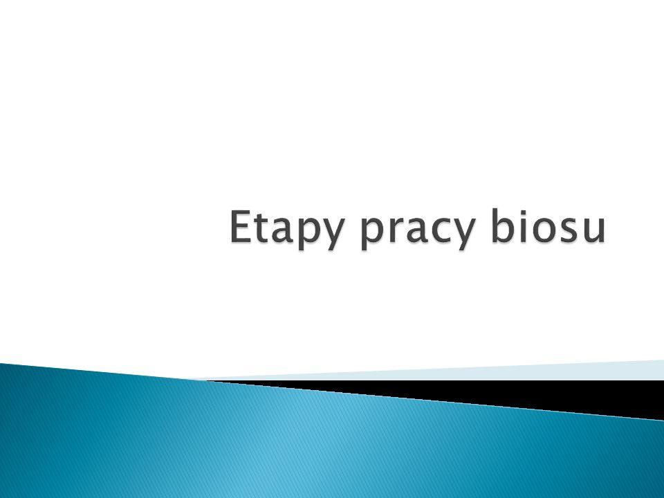 Etapy pracy biosu