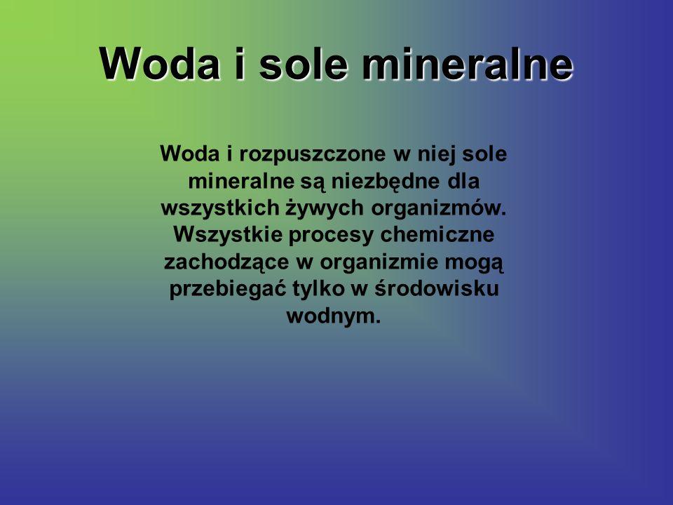 Woda i sole mineralne