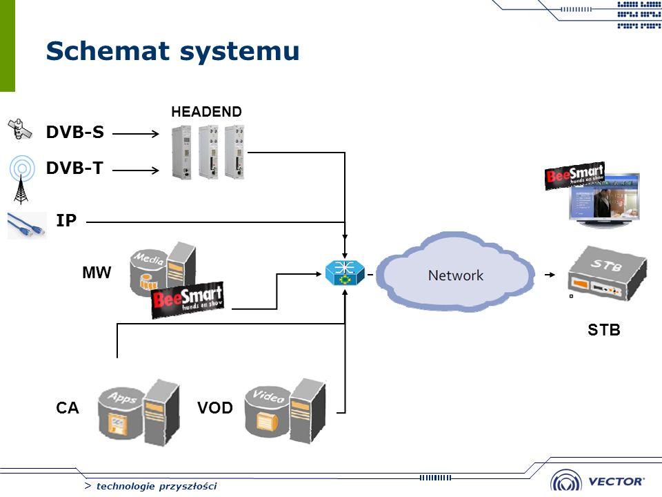Schemat systemu HEADEND DVB-S DVB-T IP MW STB CA VOD