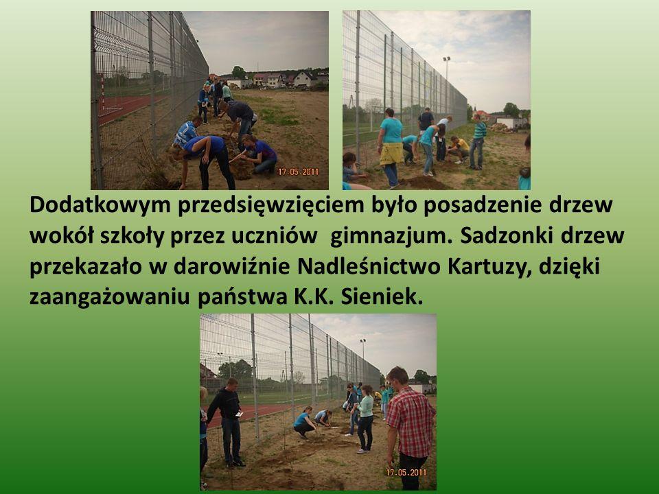 Dodatkowym przedsięwzięciem było posadzenie drzew wokół szkoły przez uczniów gimnazjum.