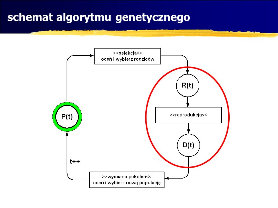 schemat algorytmu genetycznego