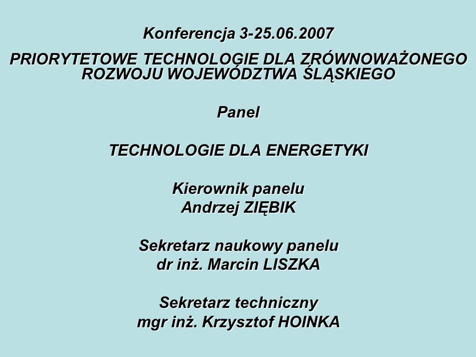 TECHNOLOGIE DLA ENERGETYKI Kierownik panelu Andrzej ZIĘBIK