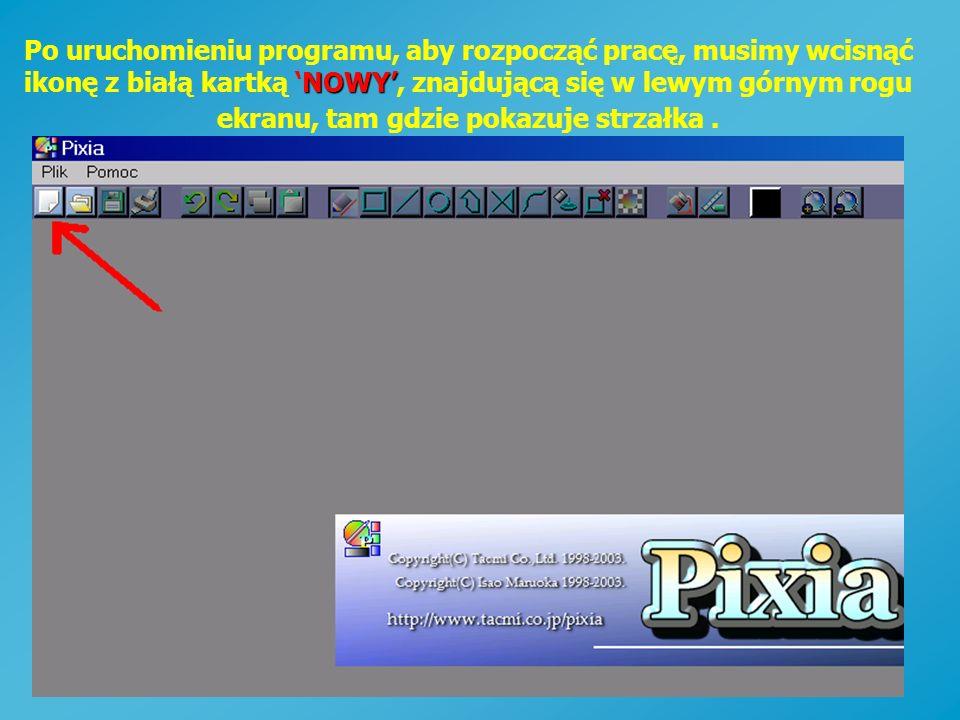 Po uruchomieniu programu, aby rozpocząć pracę, musimy wcisnąć ikonę z białą kartką 'NOWY', znajdującą się w lewym górnym rogu ekranu, tam gdzie pokazuje strzałka .